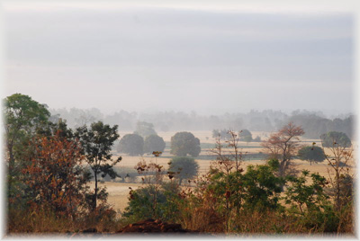 Vibrating Landscape